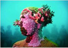 III Europa: Sculture come barriere coralline